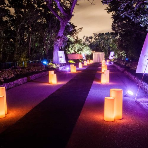 Vizcaya luminaries wax candles front of the house Miami