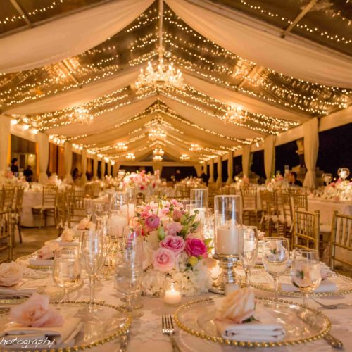 Twinkle lights Vizcaya Museum and Gardens wedding