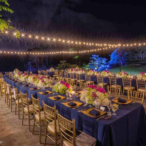 Rent string lights Miami, Morikami Museum and gardens wedding