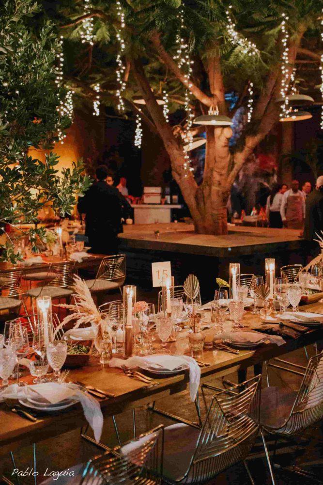 Twinkle lights tree mini lights
