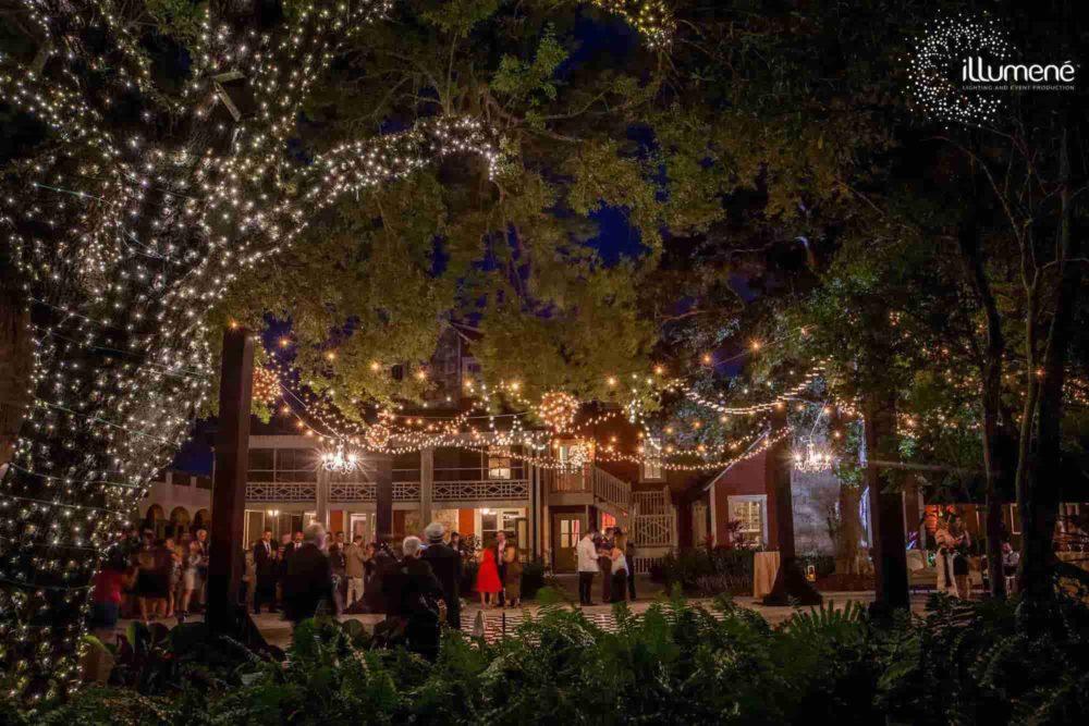 Wedding lighting string lights mini lights christmas lights