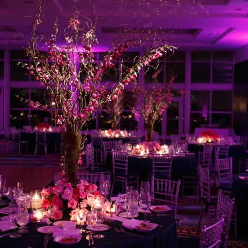 halogen LED pinspots for events wedding corporate