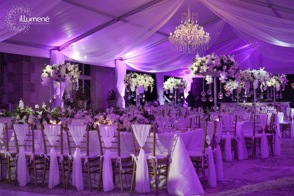 LED pinspot lighting Vizcaya Museum wedding reception in the tent