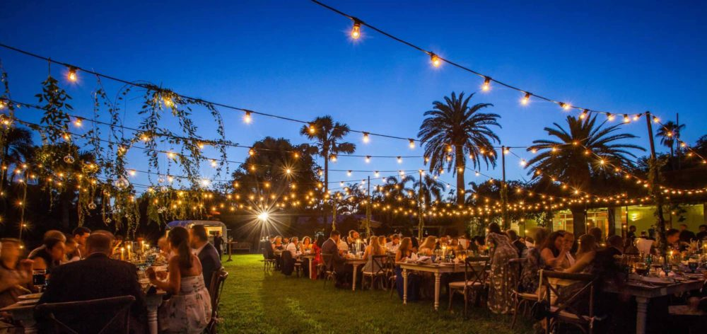 Fairchild Tropical Botanic Garden bistro lights twinkle lights mini lights